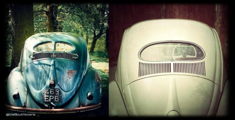 Beetle, Punch Bug, VW Bug, VW, Volkswagen, Windows, Split Window, Oval Window, KDF VW, 1953, 1938,